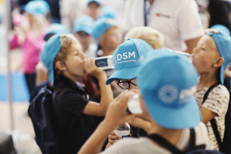 DSM17-113